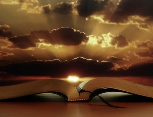 Ce se intelege prin haina  țesută la gherghef despre care este scris în Psalmul 45?