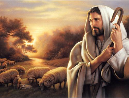 """""""Fiindcă Fiul Omului a venit să mântuiască ce era pierdut."""" – Matei 18:11"""